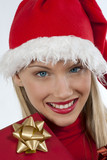 Attractive Santa girl