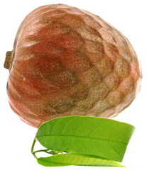 "fruit exotique ""coeur de boeuf""; annona reticulata fond blanc"
