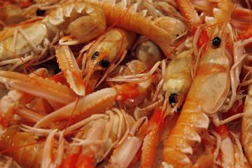 Raw fresh shrimps on the market