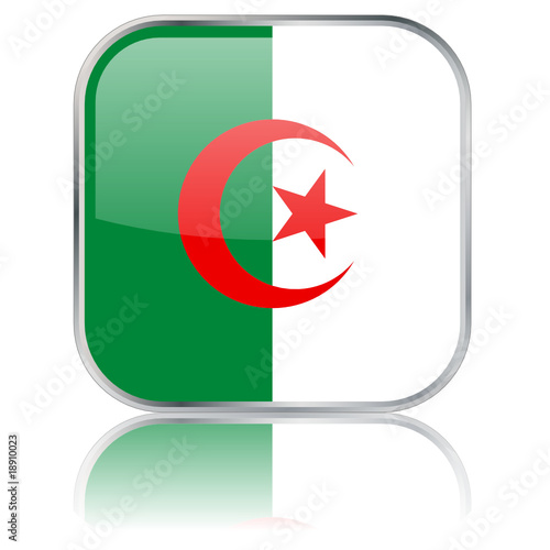 Algerian Square Flag Button (Algeria - Vector - Reflection)