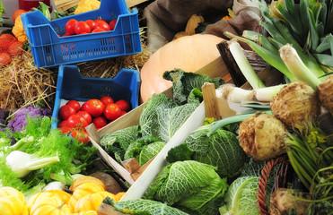 Markstand - Fenchel, Tomate, Kürbis