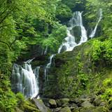 Fototapety Torc Waterfall, Killarney National Park, County Kerry, Ireland