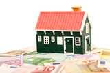 House on money field or foundation - isolated poster