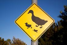 Duck traffic sign