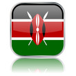 Kenyan Square Flag Button (Kenya - Vector - Reflection)