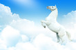 White horse in the clouds
