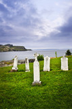 Tombstones near Atlantic coast in Newfoundland poster