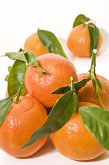 Mandarinas recien cortadas 3