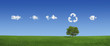 Leinwandbild Motiv Lonely tree on a green field (XXXLarge)