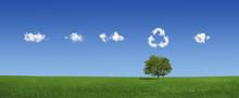 "Постер, картина, фотообои ""Lonely tree on a green field (XXXLarge)"""