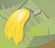 Illustration of bananas in the leaf