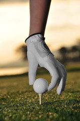 Woman's hand wearing golf-glove teeing up golf ball