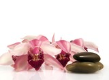 Orchid and pebbles,Zen atmosphere. poster