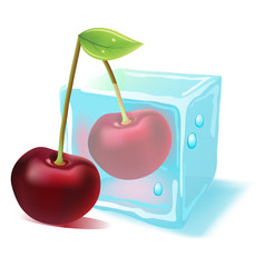 Vector ripe cherry in ice cube