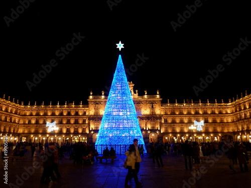 """""""arbol de navidad en la plaza mayor de salamanca en españa ..."""