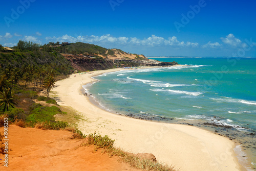 canvas print picture Beautiful beach with palm trees at Praia do Amor Brazil
