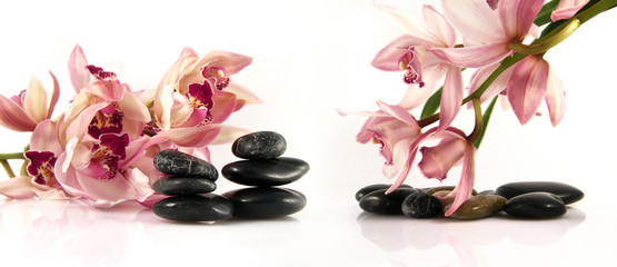 Orchid and pebbles,Zen atmosphere.