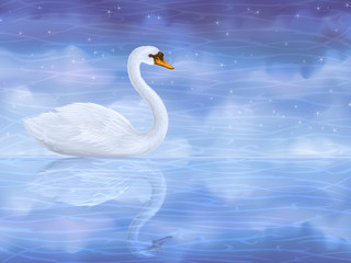 Vector white mute swan reflecting in clear blue water