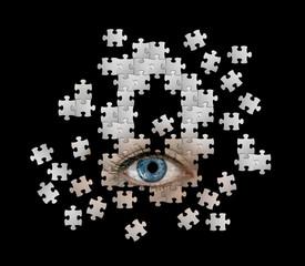eye puzzle
