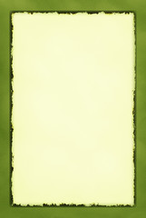 Decorative Grunge Border Series Olive