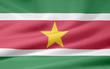 Surinamische Flagge