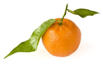 Mandarine mit Blatt isoliert auf weißem Hintergrund