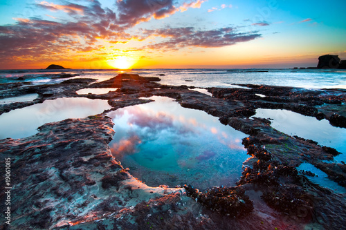 Fototapeten,auckland,strand,vögel,blau