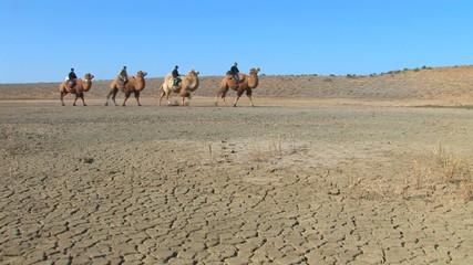Camel caravan.