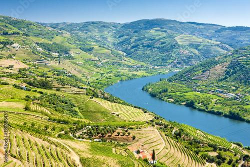 Leinwanddruck Bild vineyars in Douro Valley, Portugal