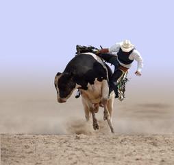 Cowboy Falling off a Bull