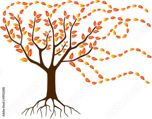 Comment dessiner un arbre d automne - Arbre d automne dessin ...
