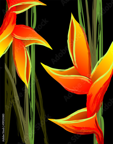 Digital painting of colourful flower design