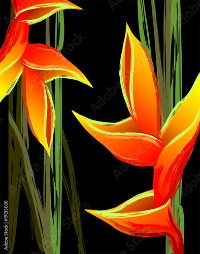 Obraz na Szkle Digital painting of colourful flower design