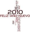 2010 Feliz Año Nuevo !