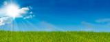 Fototapety ciel bleu soleil et herbe verte - paysage vert - prairie
