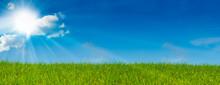 "Постер, картина, фотообои ""ciel bleu soleil et herbe verte - paysage vert - prairie"""