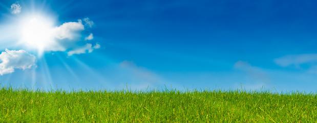 ciel bleu soleil et herbe verte - paysage vert - prairie © Olivier Le Moal