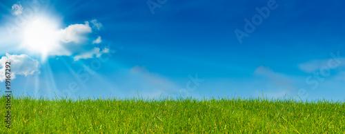 Leinwandbild Motiv ciel bleu soleil et herbe verte - paysage vert - prairie