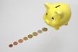 Sparschwein mit Münzreihe