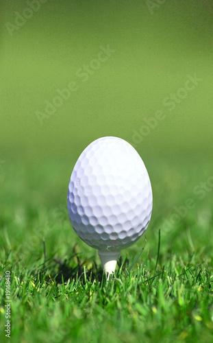Golfball Ei - 19168480