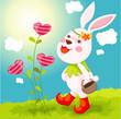 roleta: rabbit with basket