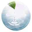 drop button