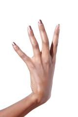 Elegant female hand