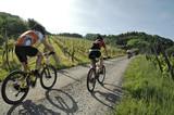Fototapety Mountainbikerin im Schwarzwald
