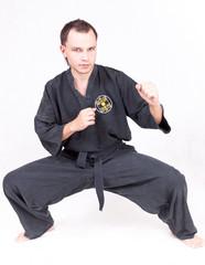 kungfu sportsman, martial arts series