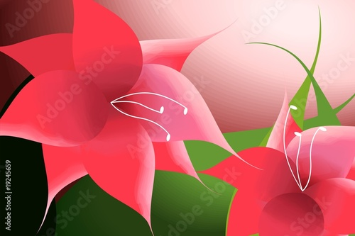 Illustration of two flowers with the background.