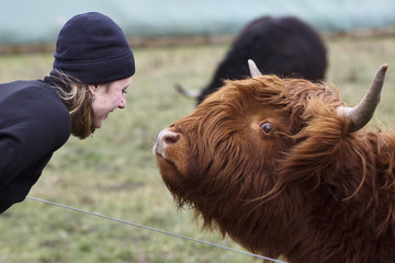 The Woman and the Highland Cow