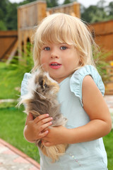 little girl plays with Guinea pig on meadow