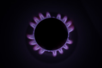 Purple Flame of A gas Cooker