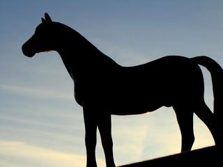 Puissant Cheval noir
